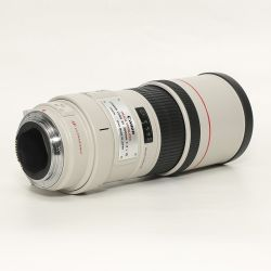 Canon EF 300/4L IS