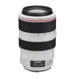 Canon EF 70-300/4-5,6L IS  USM